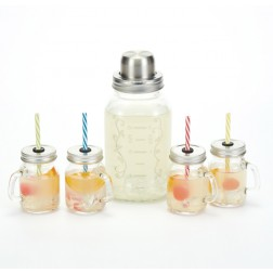 Cocktail Shaker mit Mini Becher 5er Set