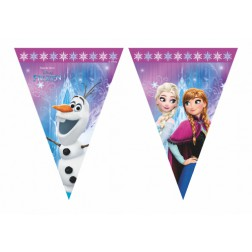 Frozen Northern Lights Flaggen Banner 2,3m