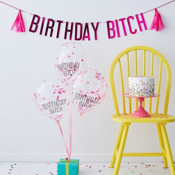 Birthday Bitch Pink Balloons & Bunting Pack Naughty Party