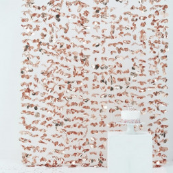 Photo Booth Backdrop Rosegold 1,8 x 2m